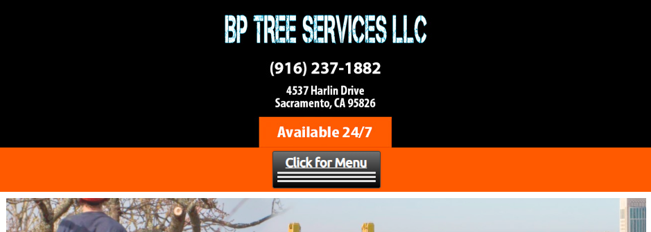Affordable Arborists in Sacramento