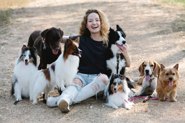 Best Doggy Day Care Centre in Washington
