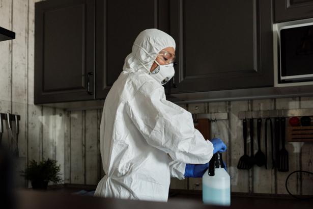 Best Pest Control Companies in Louisville
