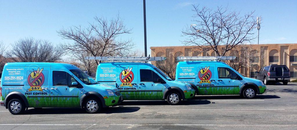 Good Pest Control Companies in Albuquerque
