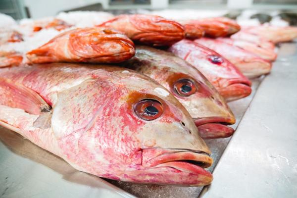Good Seafood Restaurants in Mesa