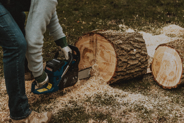 Top Tree Services in Oklahoma City