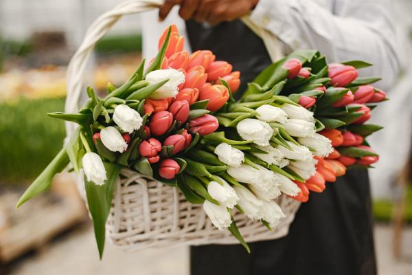 Florists Mesa
