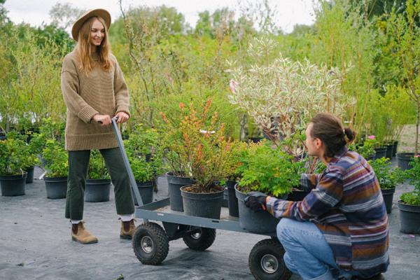 Gardeners Detroit
