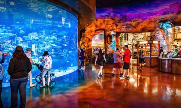 Good Aquarium/Zoos in Las Vegas