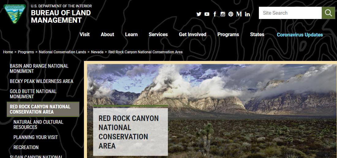 Red Rock CanyonBush Walks in Las Vegas, NV