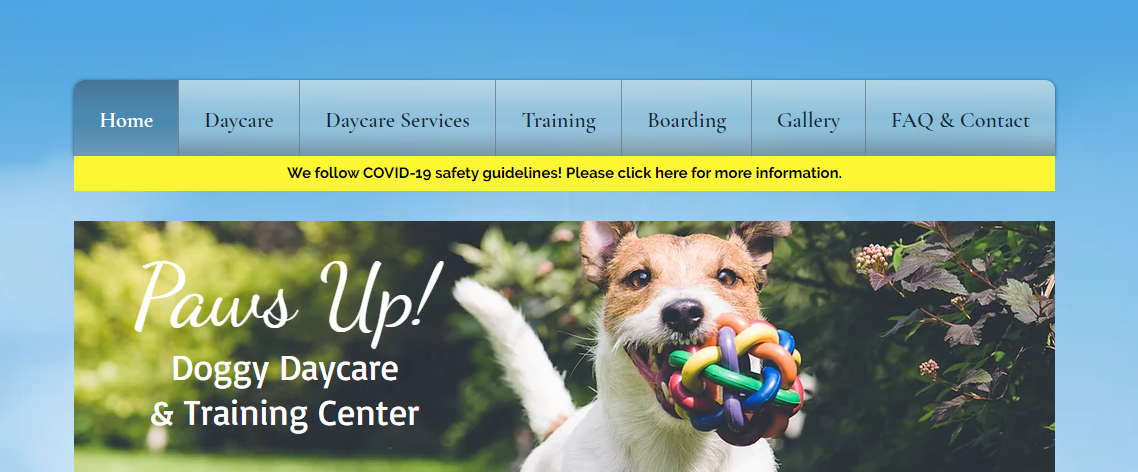 Paws Up Doggy Day Care Centers