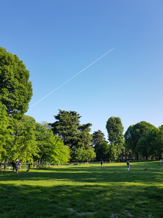 Best Parks in Boston, MA