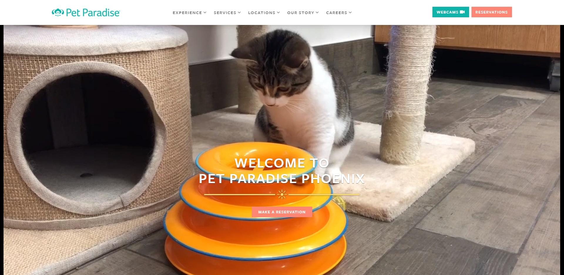 5 Best Pet Care Centers in Phoenix, AZ