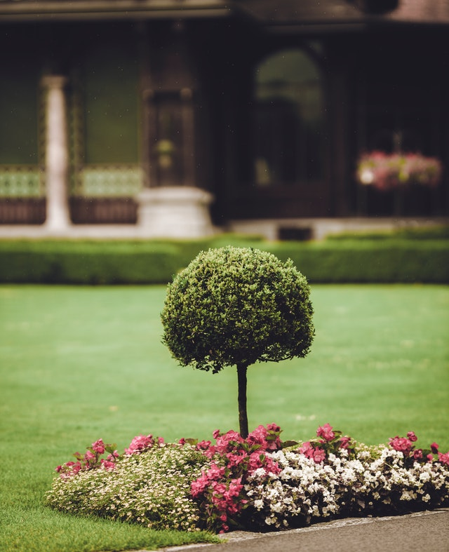 Best Landscaping Companies in St. Louis, MO