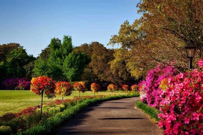 Best Parks in Jacksonville, FL