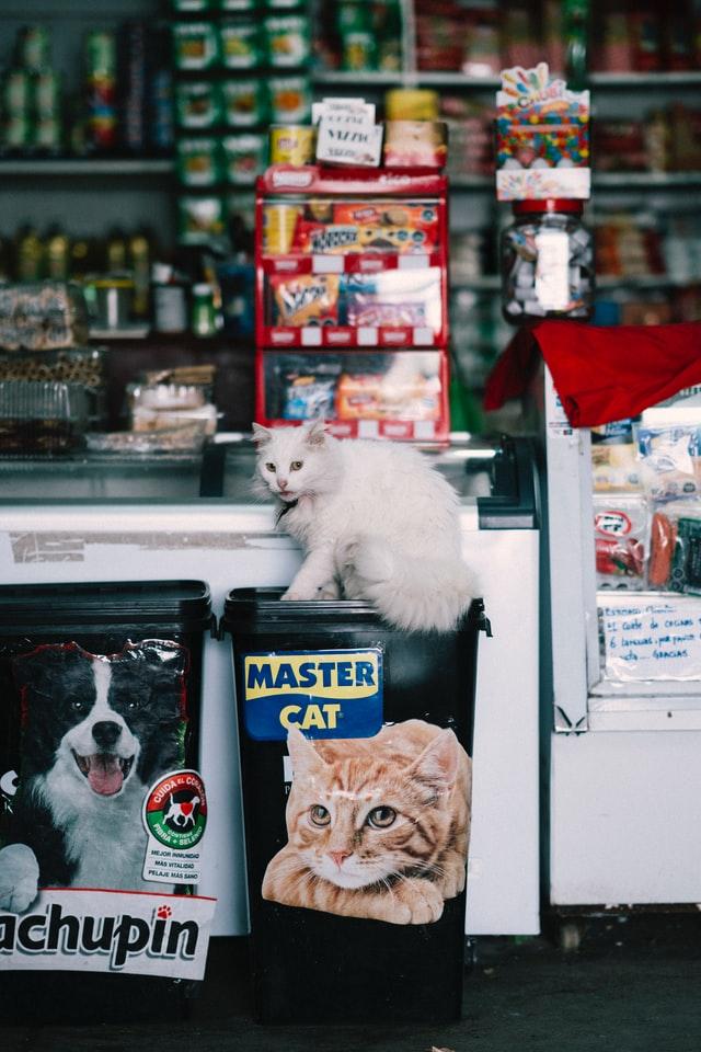 Best Pet Shops in Sacramento, CA