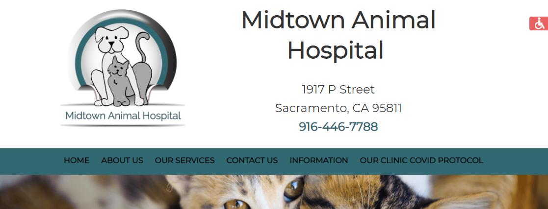 Midtown Animal Hospital