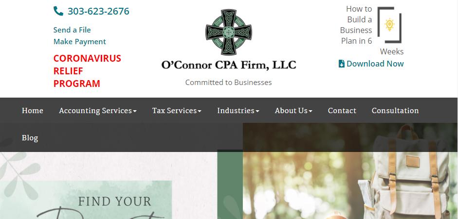 Professional Auditors in Denver