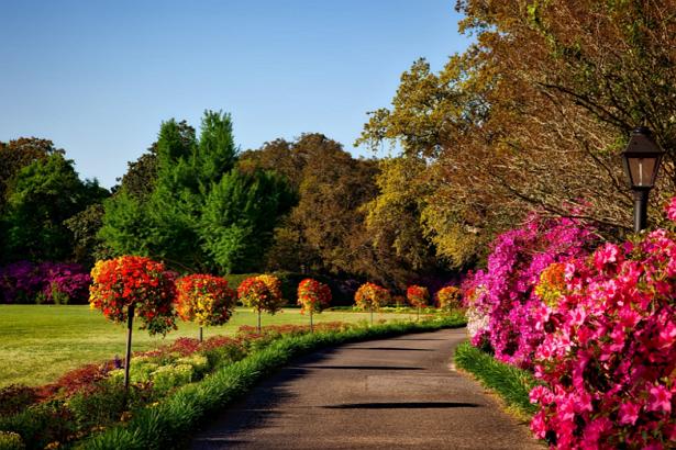 Best Parks in St. Louis