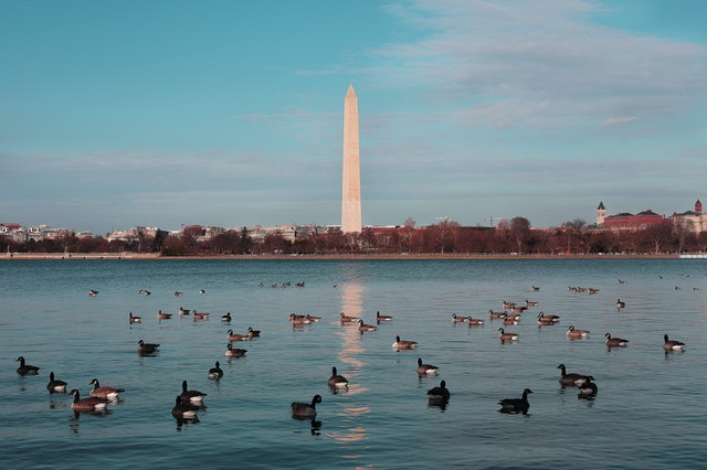 5 Best Places to Visit in Washington, DC