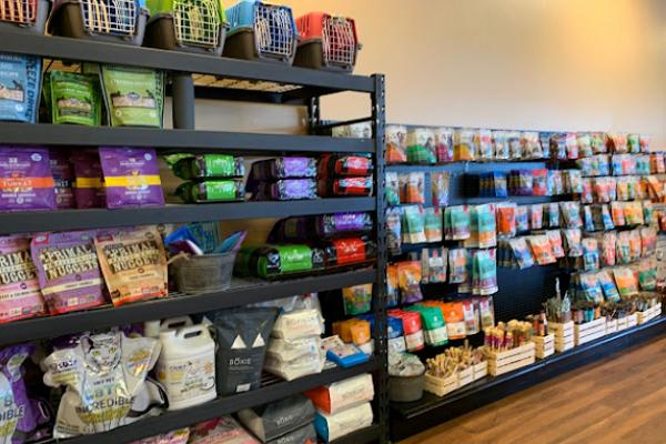 Top Pet Shops in Mesa