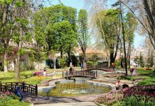 Best Parks in Fresno, CA