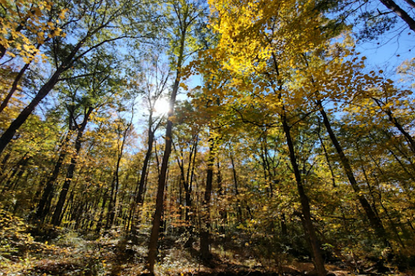 Hiking Trails in Columbus