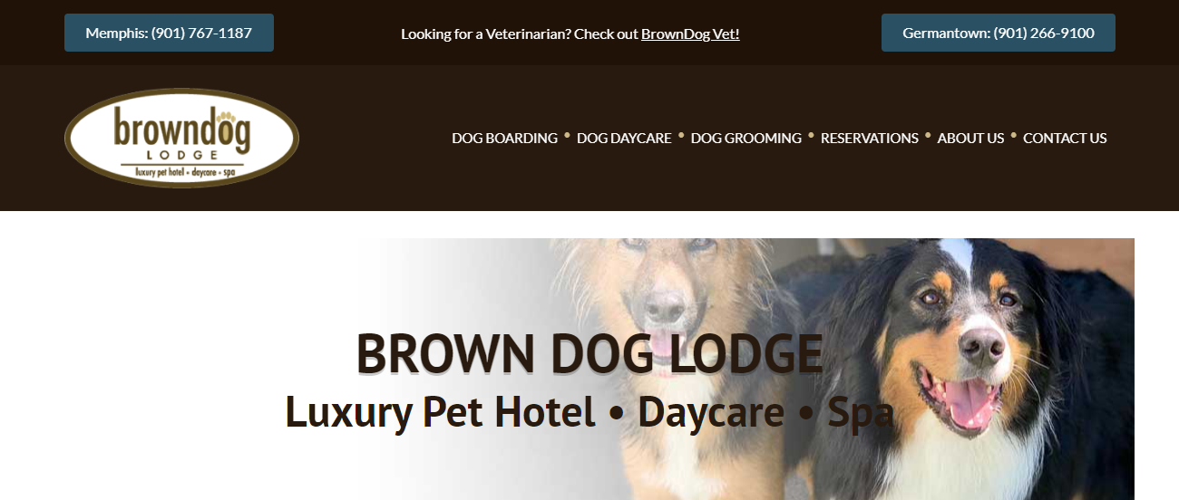 BrownDog Lodge in Memphis, TN