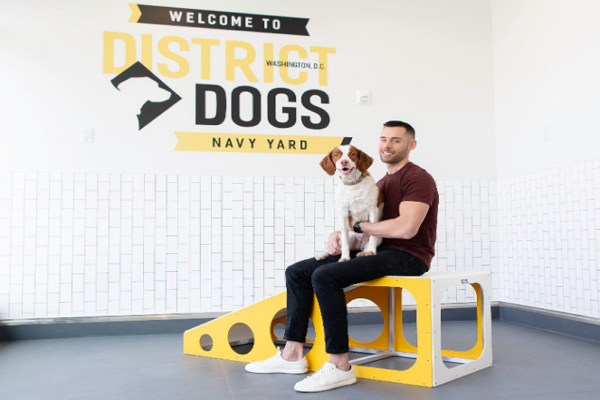 One of the best Dog Grooming in Washington
