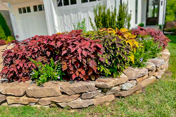 Top Landscaping Companies in Nashville