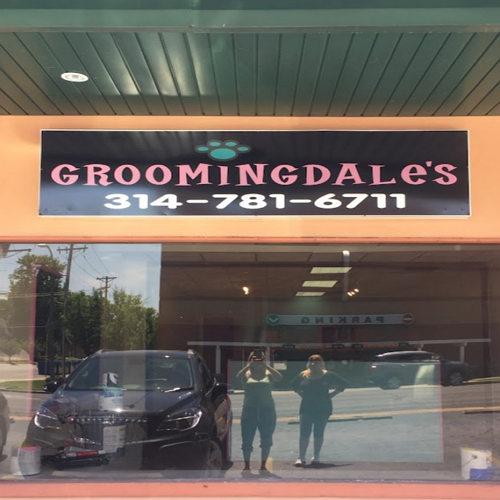 One of the Best Dog Grooming in St. Louis