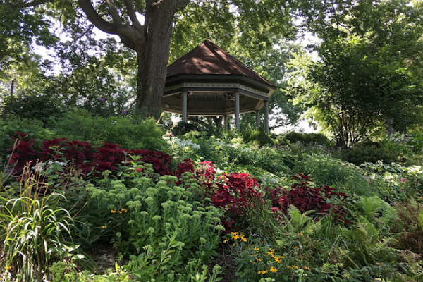 Top Parks in St. Louis
