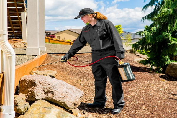 One of the Best Pest Control Companies in St. Louis