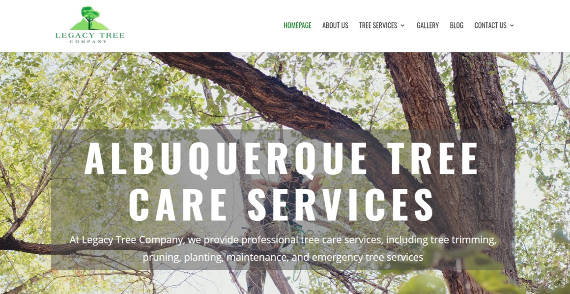 Top Arborists in Albuquerque