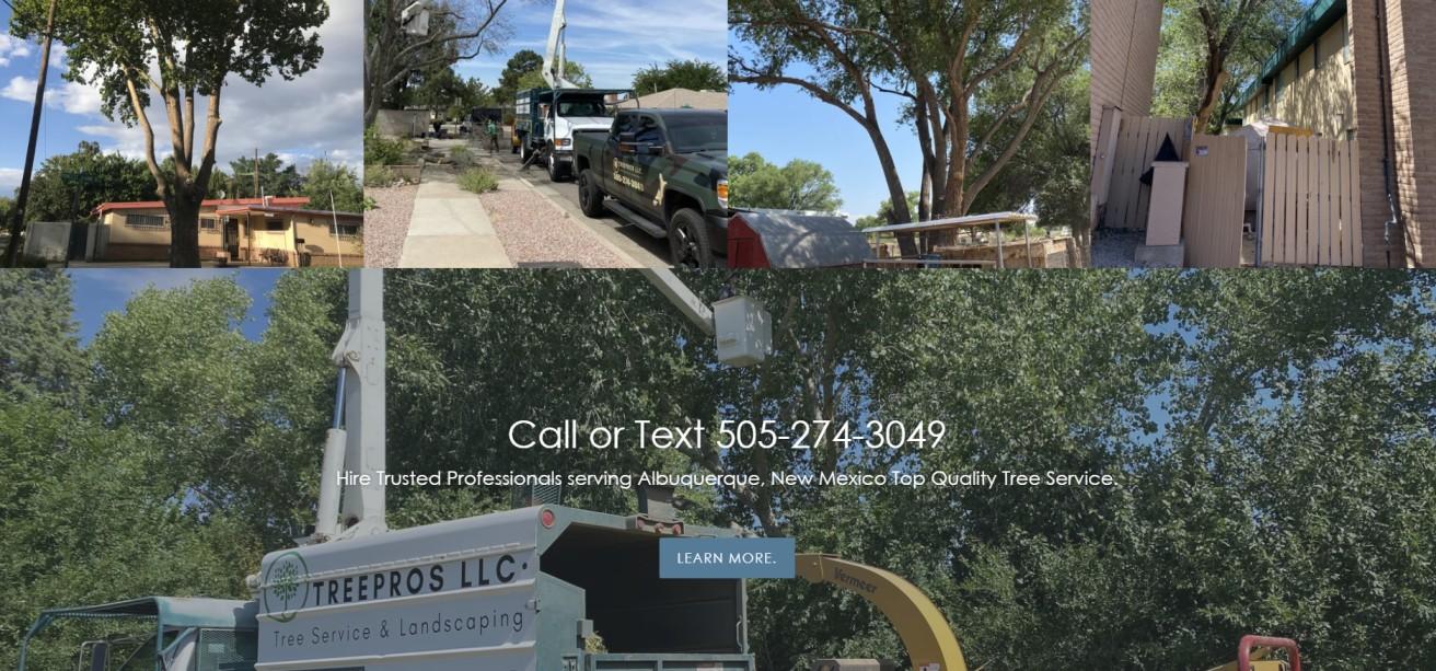 Good Arborists in Albuquerque
