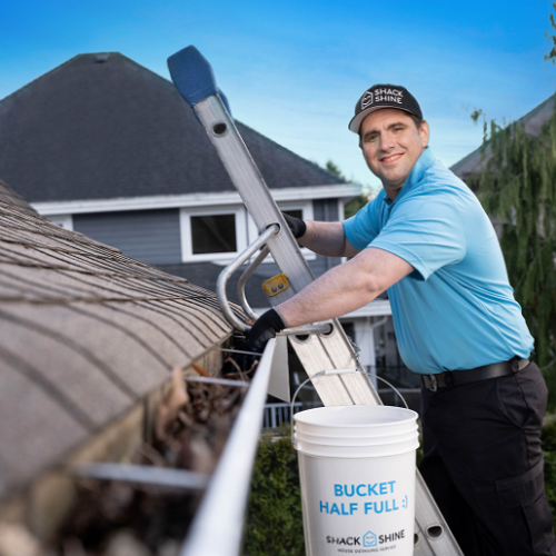 Good House Cleaning Services in Mesa