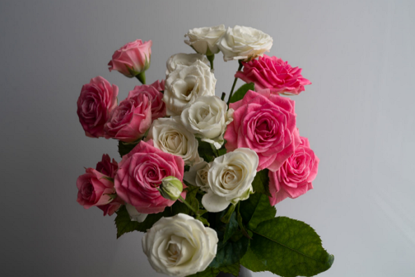 Florists Portland