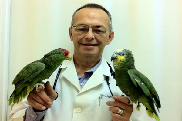 Veterinarians in Louisville