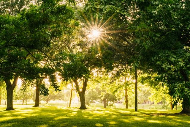 Woodward Park in Fresno, CA