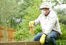 Best Pest Control Companies in Baltimore, MD