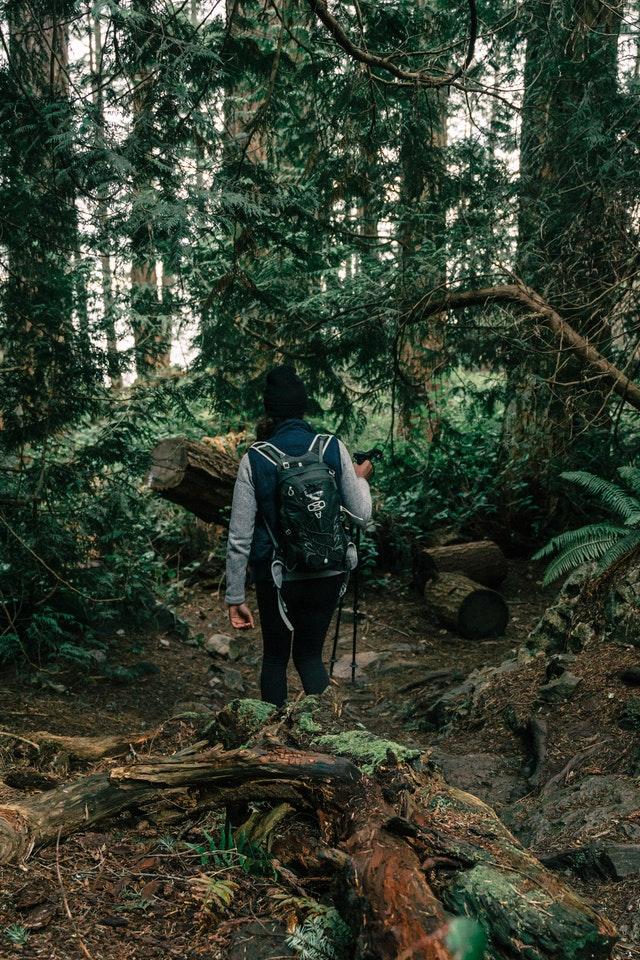 5 Best Hiking Trails in Albuquerque