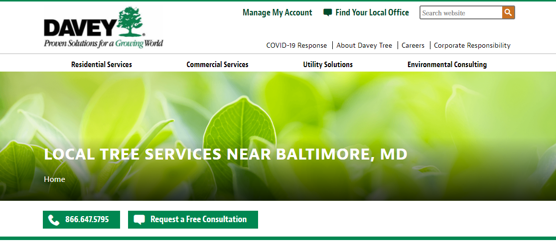 Davey Arborists in Baltimore, MD