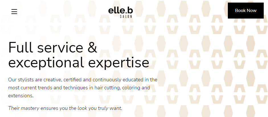 Proficient Hairdressers in Denver