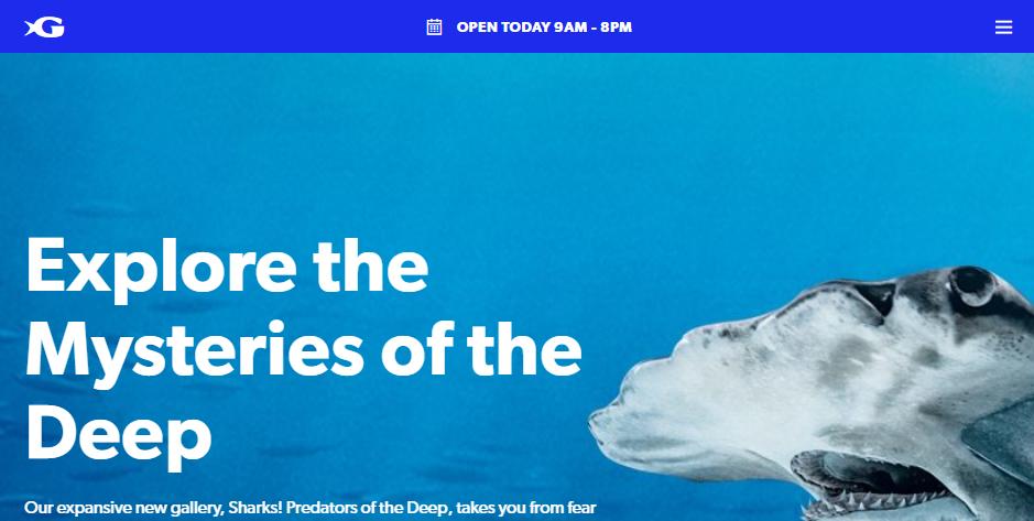 Clean Aquariums and Zoos in Atlanta