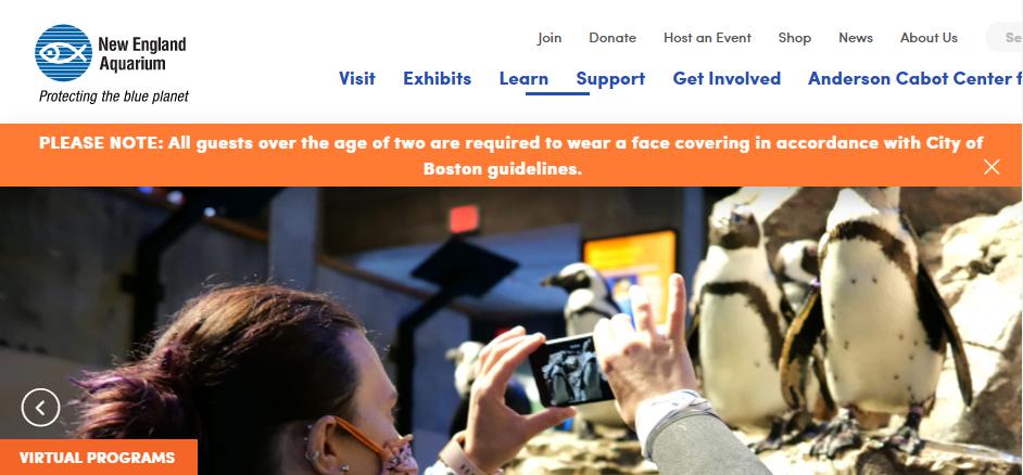 Popular Experiences in Boston