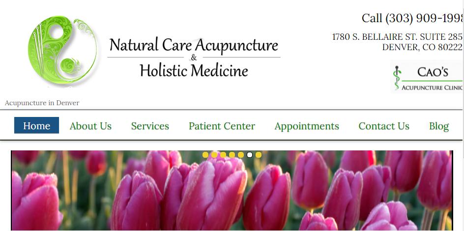 Professional Acupuncture in Denver