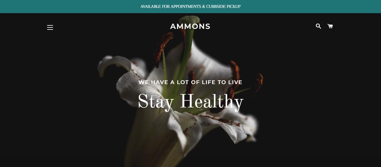 Ammons Design & Home Decor in Fresno, CA