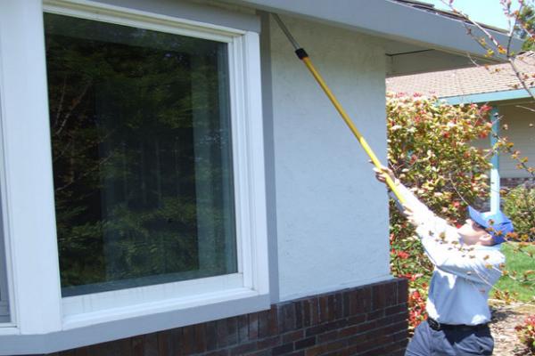 Top Pest Control Companies in Sacramento