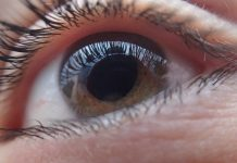Best Optometrists in Las Vegas, NV