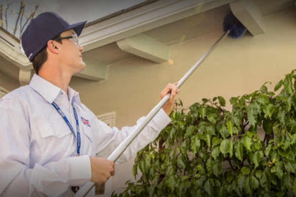 Pest Control Companies in Sacramento