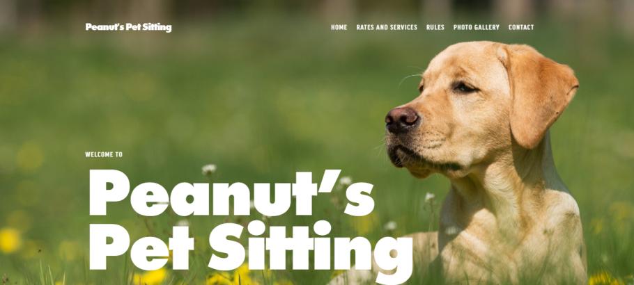 Peanut's Pet Sitting in Louisville, KY