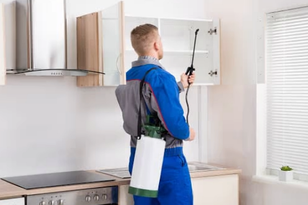 One of the best Pest Control Companies in Sacramento