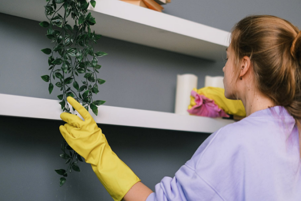 Top House Cleaning Sevices in Boston
