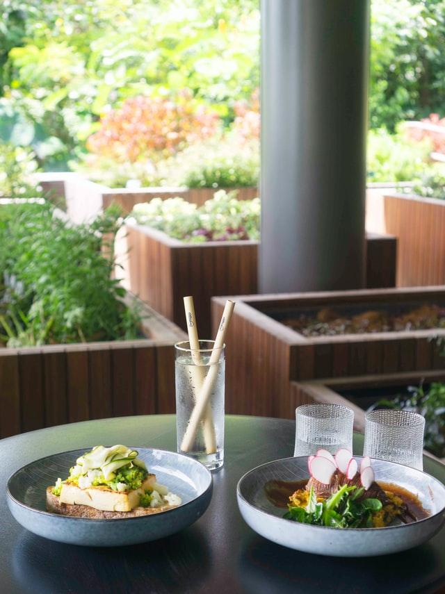 5 Best Vegan Restaurants in Tucson